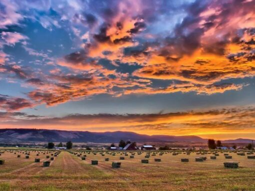 ADAMS COUNTY, IDAHO